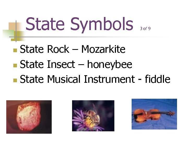 State Symbols 3 of 9 State Rock – Mozarkite n State Insect – honeybee