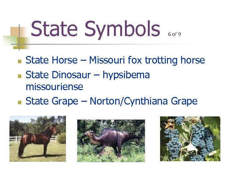 State Symbols n n n 6 of 9 State Horse – Missouri fox trotting