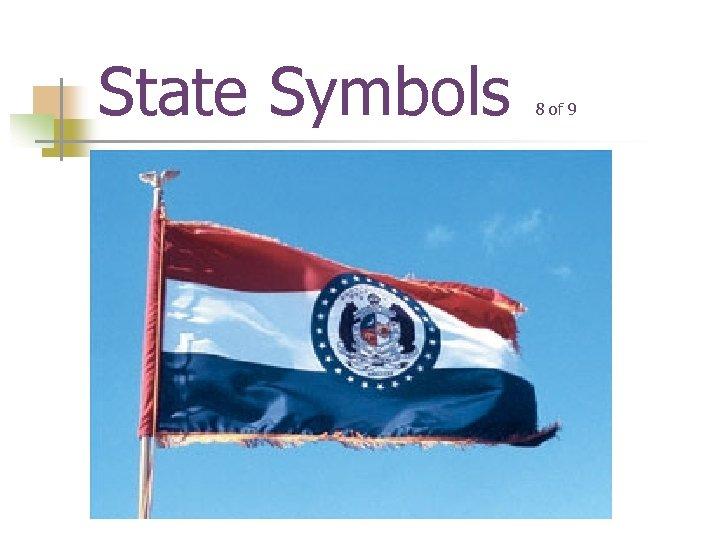 State Symbols 8 of 9