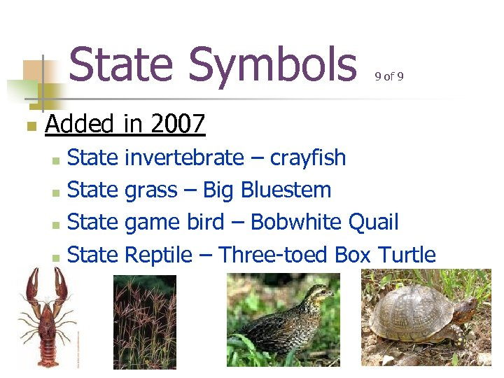 State Symbols n 9 of 9 Added in 2007 State n invertebrate – crayfish