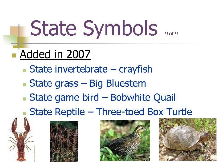 State Symbols n 9 of 9 Added in 2007 State n invertebrate – crayfish