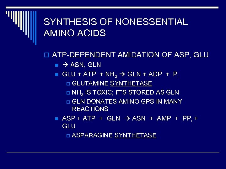 SYNTHESIS OF NONESSENTIAL AMINO ACIDS o ATP-DEPENDENT AMIDATION OF ASP, GLU n ASN, GLN