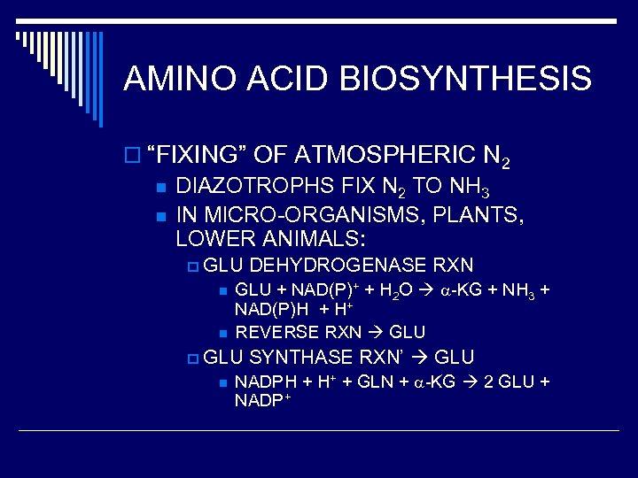 """AMINO ACID BIOSYNTHESIS o """"FIXING"""" OF ATMOSPHERIC N 2 n DIAZOTROPHS FIX N 2"""