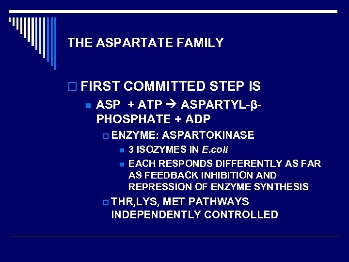 THE ASPARTATE FAMILY o FIRST COMMITTED STEP IS n ASP + ATP ASPARTYL-βPHOSPHATE +