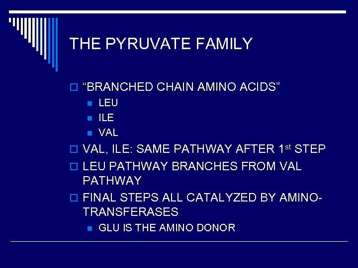 "THE PYRUVATE FAMILY o ""BRANCHED CHAIN AMINO ACIDS"" n LEU n ILE n VAL"