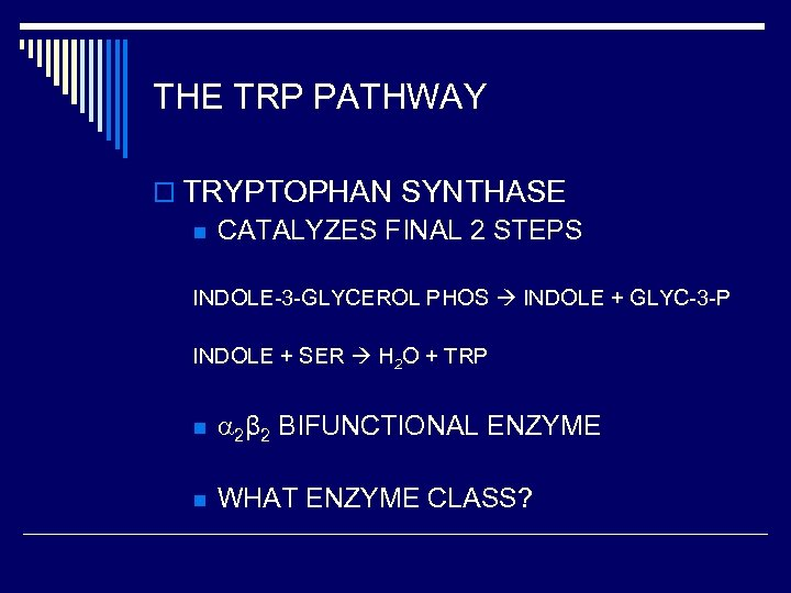 THE TRP PATHWAY o TRYPTOPHAN SYNTHASE n CATALYZES FINAL 2 STEPS INDOLE-3 -GLYCEROL PHOS