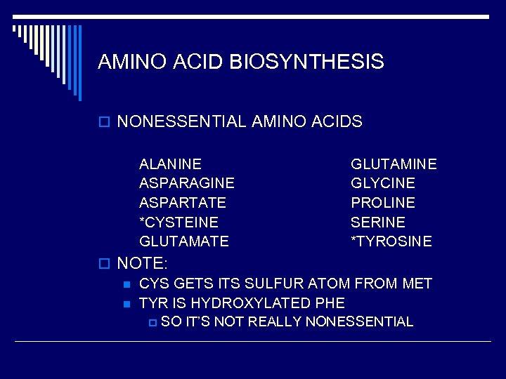 AMINO ACID BIOSYNTHESIS o NONESSENTIAL AMINO ACIDS ALANINE ASPARAGINE ASPARTATE *CYSTEINE GLUTAMATE GLUTAMINE GLYCINE