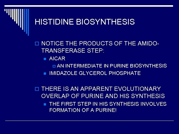 HISTIDINE BIOSYNTHESIS o NOTICE THE PRODUCTS OF THE AMIDO- TRANSFERASE STEP: n n AICAR