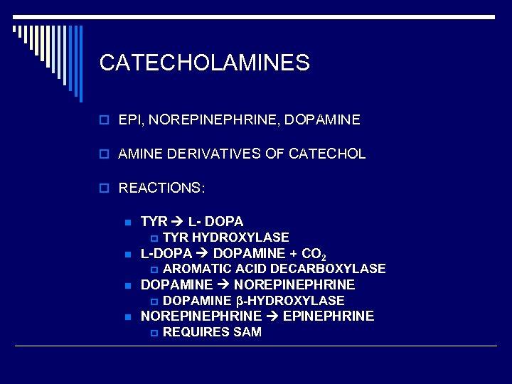 CATECHOLAMINES o EPI, NOREPINEPHRINE, DOPAMINE o AMINE DERIVATIVES OF CATECHOL o REACTIONS: n TYR