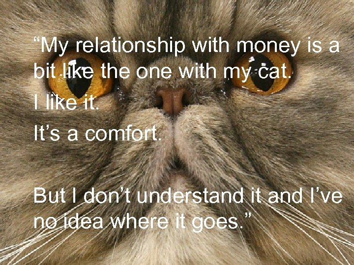 """""""My relationship with money is a bit like the one with my cat. I"""