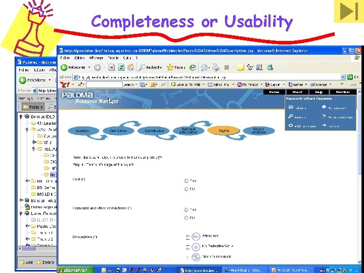Completeness or Usability