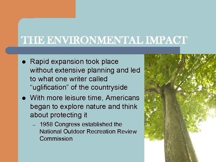 THE ENVIRONMENTAL IMPACT l l Rapid expansion took place without extensive planning and led