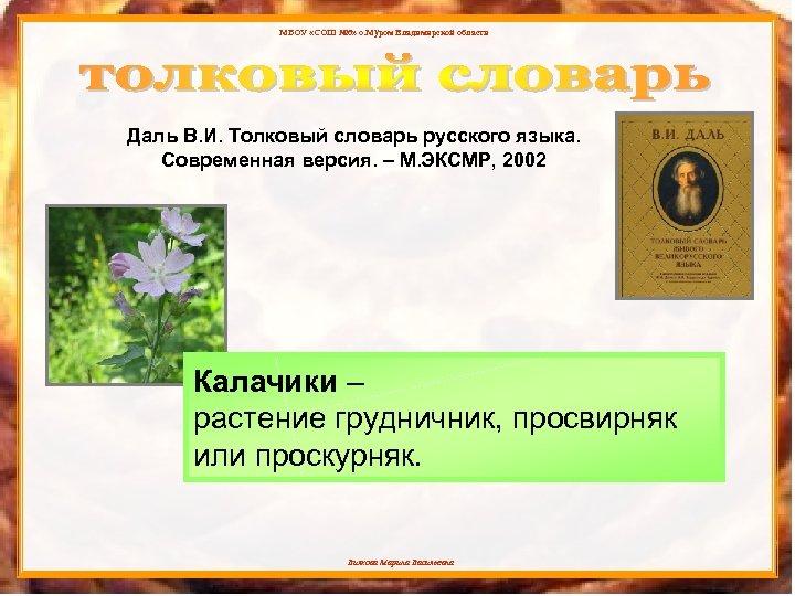 МБОУ «СОШ № 6» о. Муром Владимирской области Даль В. И. Толковый словарь русского