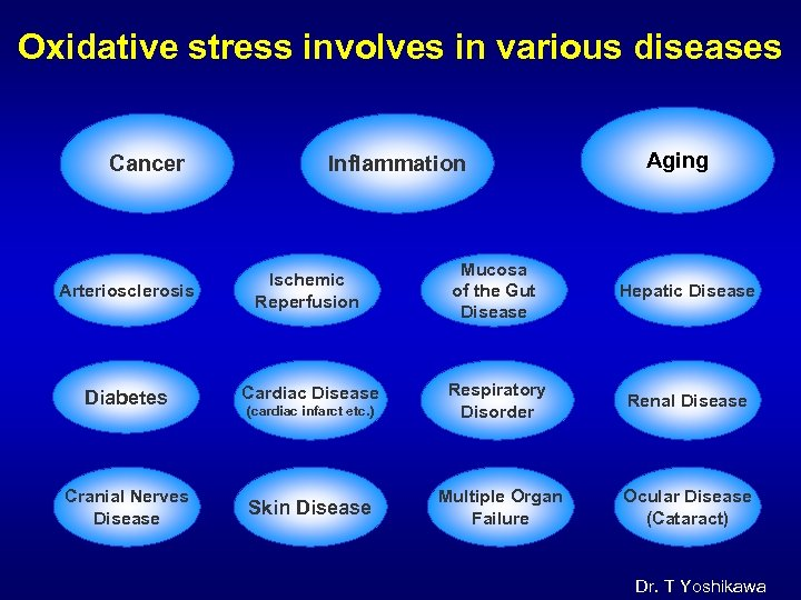 Oxidative stress involves in various diseases Cancer Inflammation Aging Arteriosclerosis Ischemic Reperfusion Mucosa of