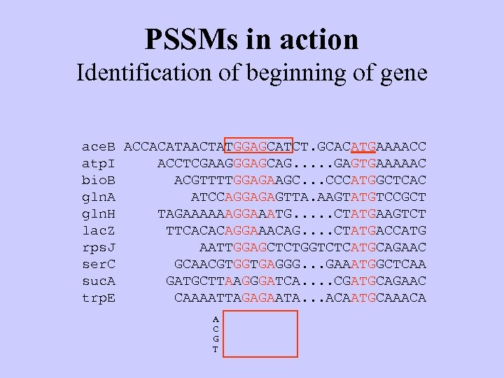 PSSMs in action Identification of beginning of gene ace. B ACCACATAACTATGGAGCATCT. GCACATGAAAACC atp. I