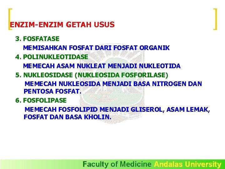 ENZIM-ENZIM GETAH USUS 3. FOSFATASE MEMISAHKAN FOSFAT DARI FOSFAT ORGANIK 4. POLINUKLEOTIDASE MEMECAH ASAM