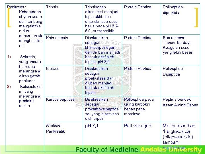 Pankreas : Tripsin Keberadaan chyme asam dari lambung mengaktifka n duodenum untuk Khimotripsin menghasilka