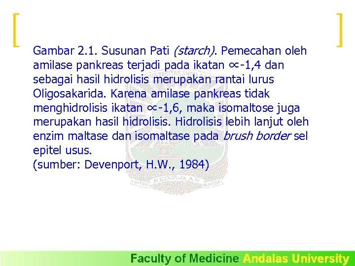 Gambar 2. 1. Susunan Pati (starch). Pemecahan oleh amilase pankreas terjadi pada ikatan ∝-1,