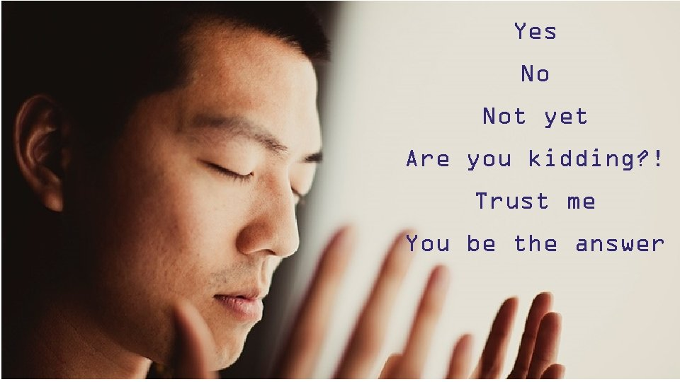 Yes No Not yet Are you kidding? ! Trust me You be the answer