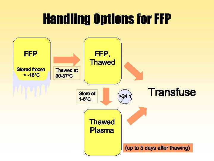 Handling Options for FFP Stored frozen < -18°C Thawed at 30 -37ºC FFP, Thawed