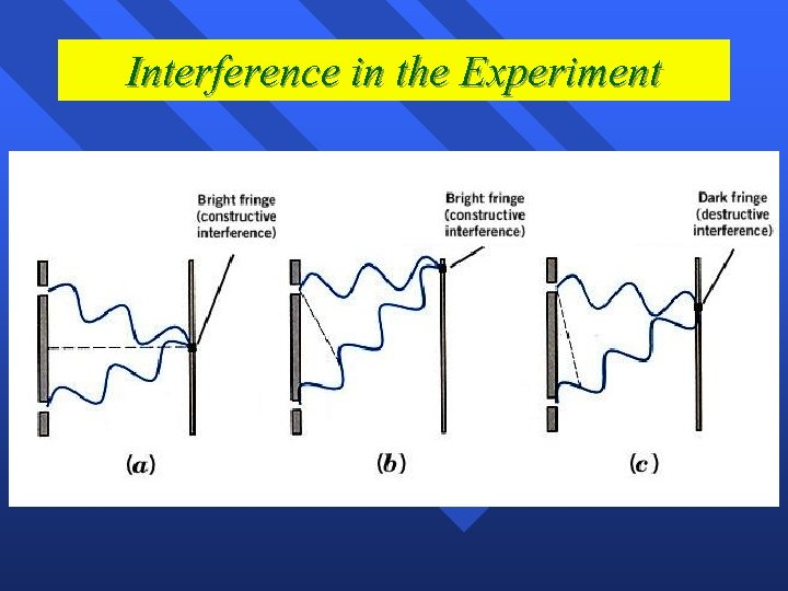 Interference in the Experiment