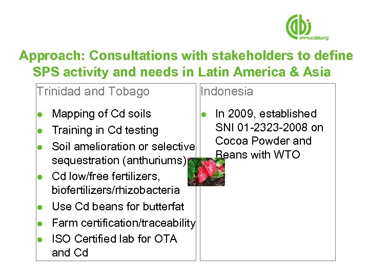 Approach: Consultations with stakeholders to define SPS activity and needs in Latin America &