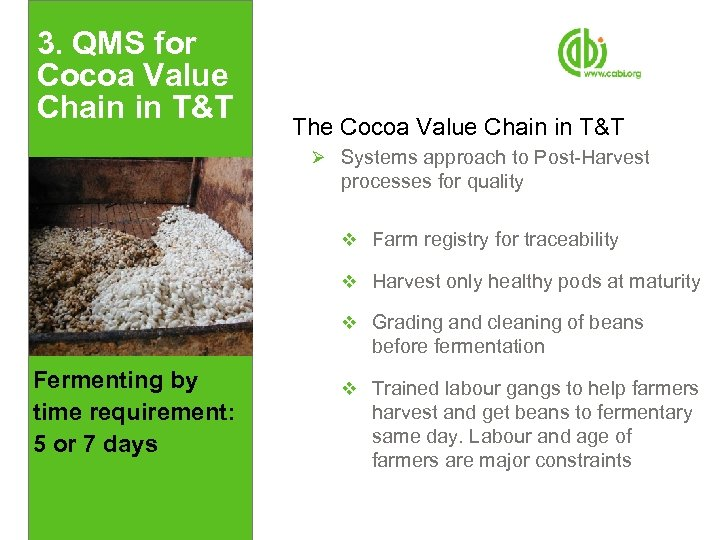 3. QMS for Cocoa Value Chain in T&T The Cocoa Value Chain in T&T