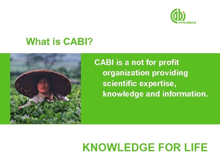 What is CABI? CABI is a not for profit organization providing scientific expertise, knowledge