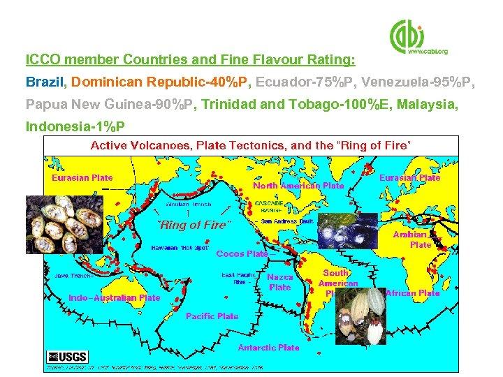 ICCO member Countries and Fine Flavour Rating: Brazil, Dominican Republic-40%P, Ecuador-75%P, Venezuela-95%P, Papua New