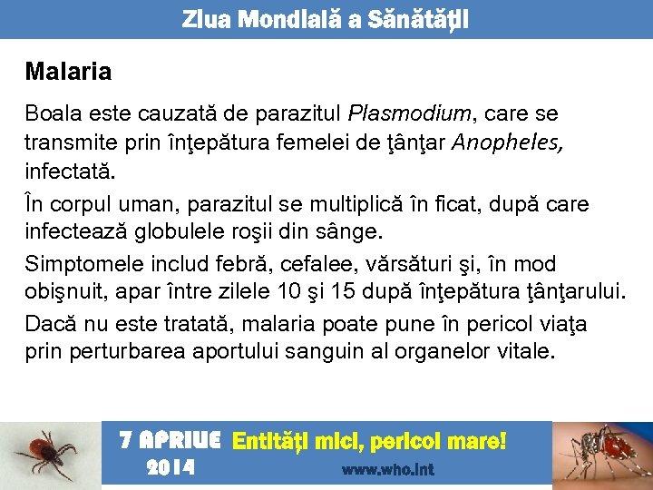 Ziua Mondială a Sănătăţii Malaria Boala este cauzată de parazitul Plasmodium, care se transmite