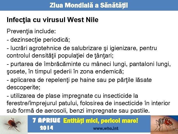 Ziua Mondială a Sănătăţii Infecţia cu virusul West Nile Prevenţia include: - dezinsecţie periodică;