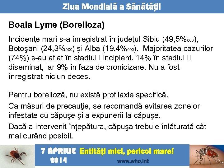 Ziua Mondială a Sănătăţii Boala Lyme (Borelioza) Incidențe mari s-a înregistrat în judeţul Sibiu