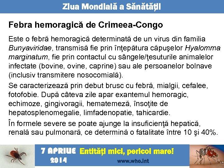 Ziua Mondială a Sănătăţii Febra hemoragică de Crimeea-Congo Este o febră hemoragică determinată de