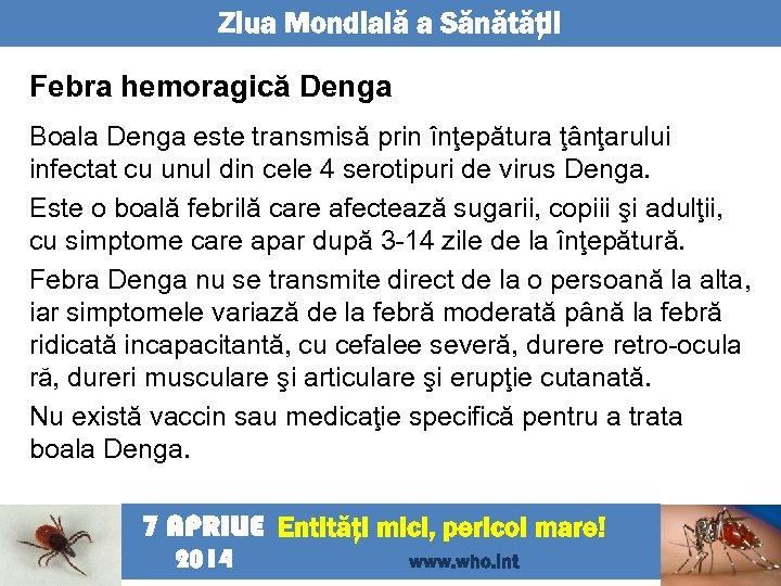 Ziua Mondială a Sănătăţii Febra hemoragică Denga Boala Denga este transmisă prin înţepătura ţânţarului
