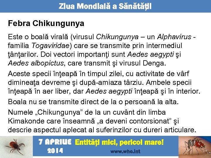 Ziua Mondială a Sănătăţii Febra Chikungunya Este o boală virală (virusul Chikungunya – un