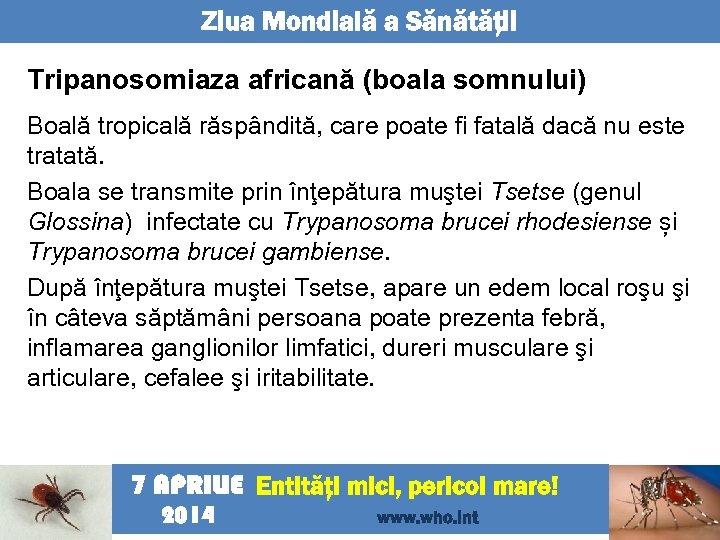Ziua Mondială a Sănătăţii Tripanosomiaza africană (boala somnului) Boală tropicală răspândită, care poate fi