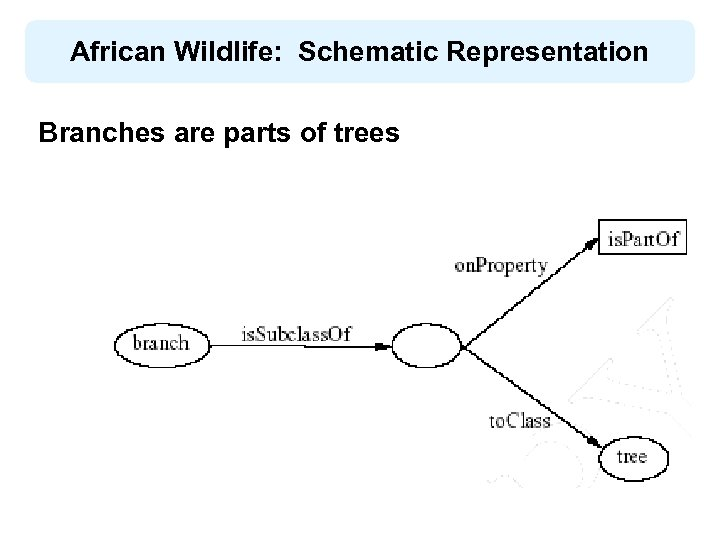 African Wildlife: Schematic Representation Βranches are parts of trees