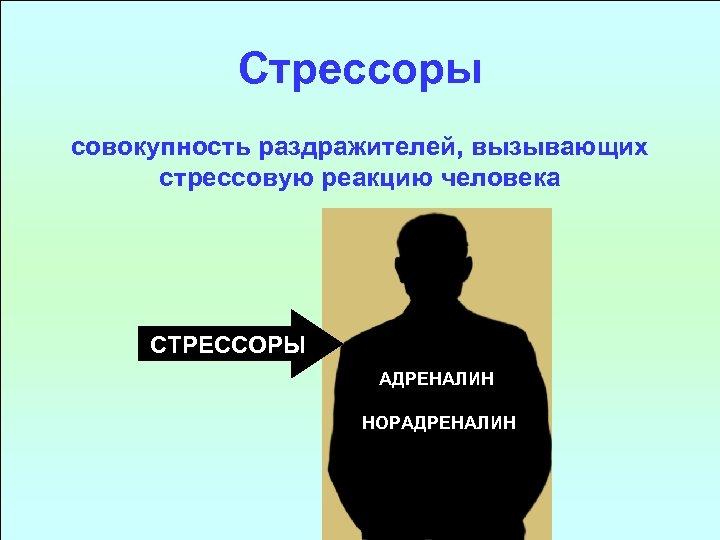 Стрессоры совокупность раздражителей, вызывающих стрессовую реакцию человека СТРЕССОРЫ АДРЕНАЛИН НОРАДРЕНАЛИН