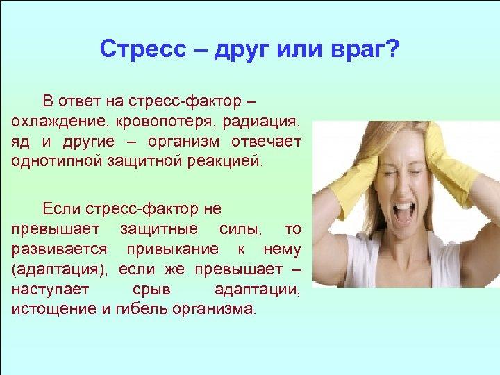 Стресс – друг или враг? В ответ на стресс-фактор – охлаждение, кровопотеря, радиация, яд
