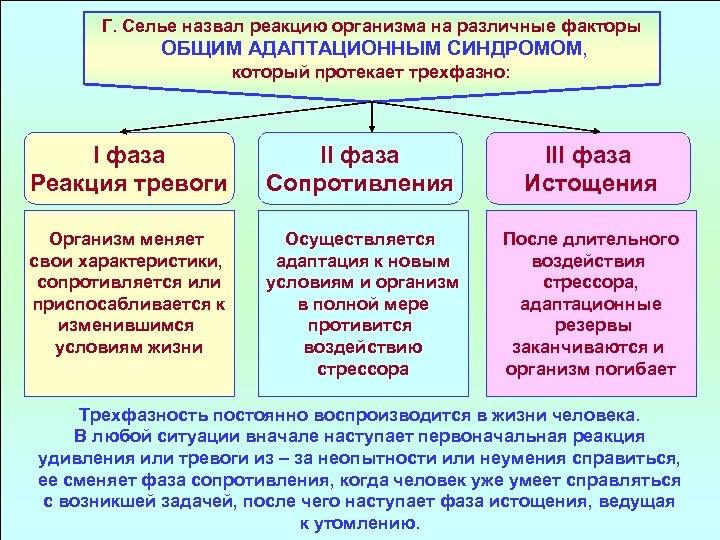 Г. Селье назвал реакцию организма на различные факторы ОБЩИМ АДАПТАЦИОННЫМ СИНДРОМОМ, который протекает трехфазно: