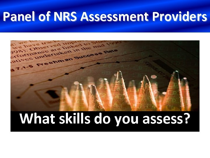 Panel of NRS Assessment Providers What skills do you assess?