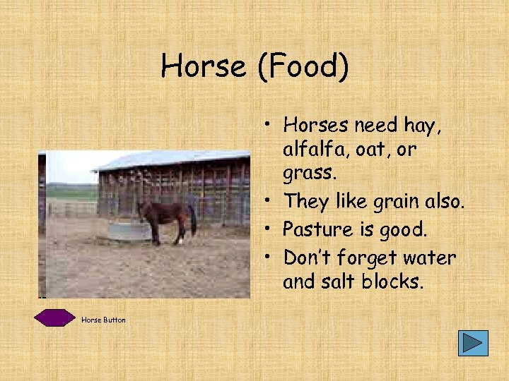 Horse (Food) • Horses need hay, alfalfa, oat, or grass. • They like grain