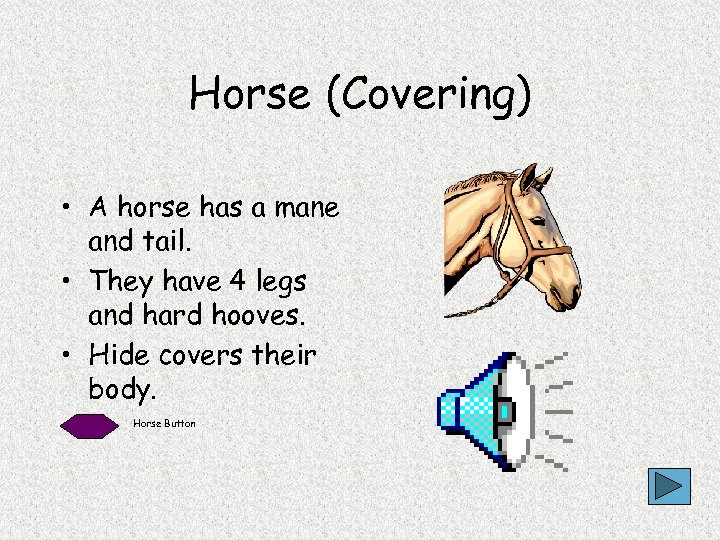 Horse (Covering) • A horse has a mane and tail. • They have 4