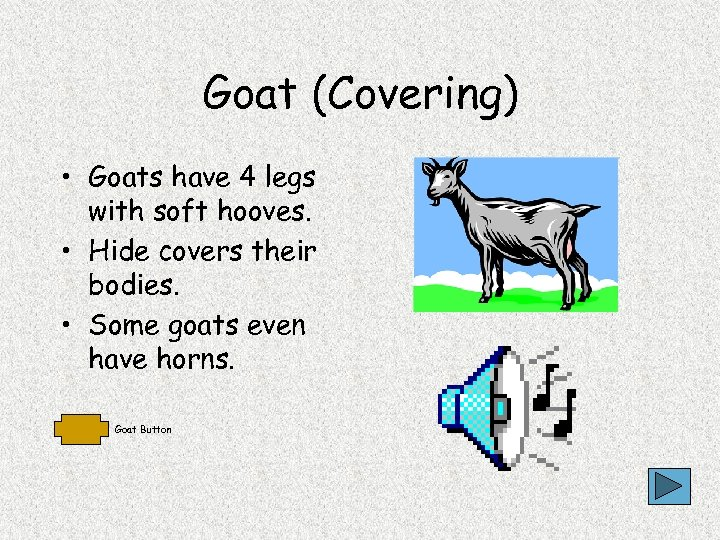 Goat (Covering) • Goats have 4 legs with soft hooves. • Hide covers their