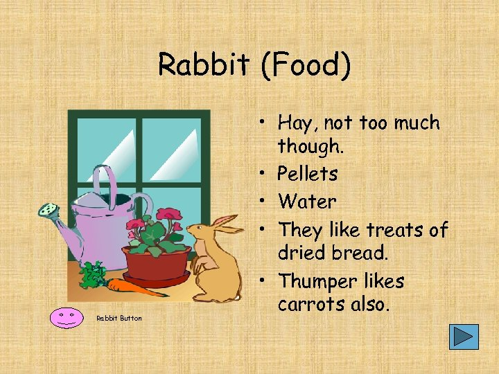 Rabbit (Food) Rabbit Button • Hay, not too much though. • Pellets • Water