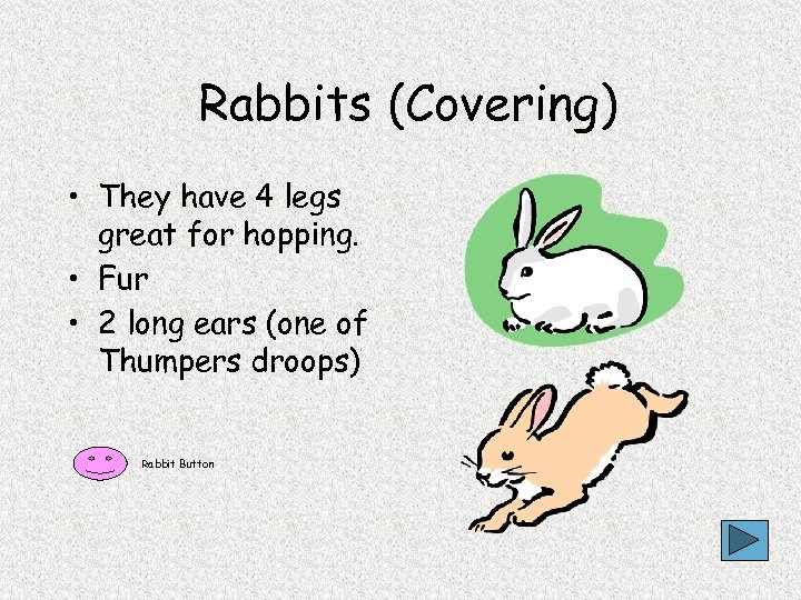 Rabbits (Covering) • They have 4 legs great for hopping. • Fur • 2