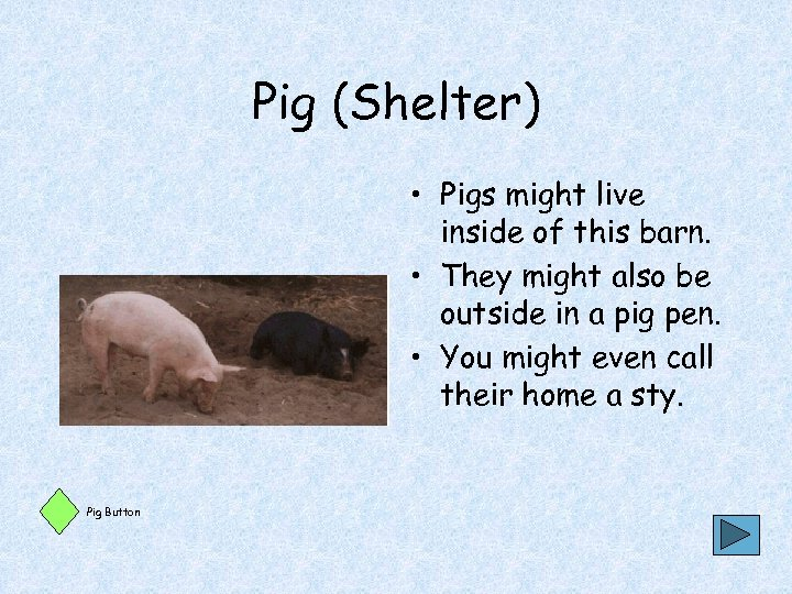 Pig (Shelter) • Pigs might live inside of this barn. • They might also