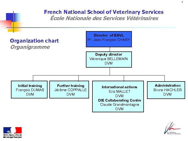 7 French National School of Veterinary Services École Nationale des Services Vétérinaires Organization chart