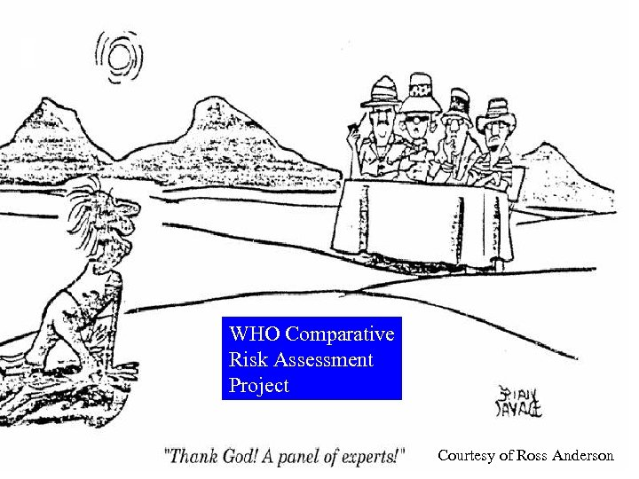 WHO Comparative Risk Assessment Project Courtesy of Ross Anderson