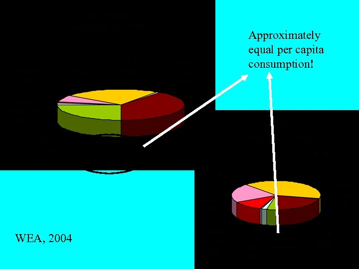 Approximately equal per capita consumption! WEA, 2004